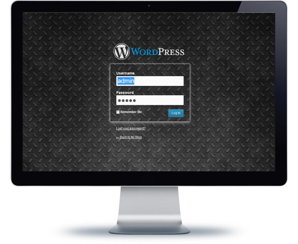WordPress Custom Login Theme Page - 11